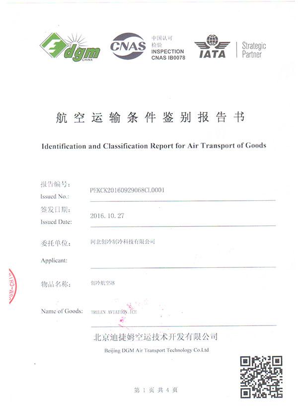 北京迪捷姆(dgm)航空检测报告